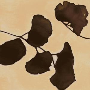 Leaves of Origin II by Julianne Marcoux