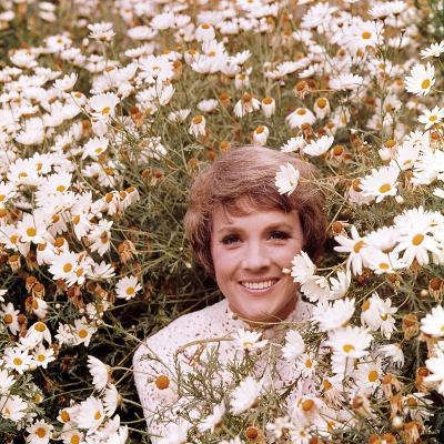 Julie Andrews Hour, Julie Andrews, 1972-1973--Photo