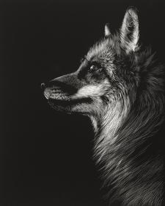 Black Glimpse V by Julie Chapman