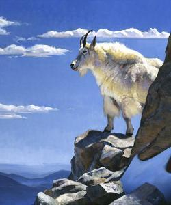 Rocky Mountain High by Julie Chapman