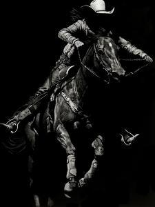 Scratchboard Rodeo IV by Julie Chapman