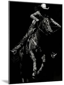 Scratchboard Rodeo IV by Julie Chapman