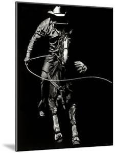 Scratchboard Rodeo VIII by Julie Chapman