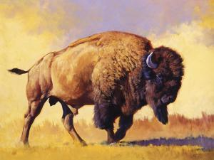 Tatanka by Julie Chapman