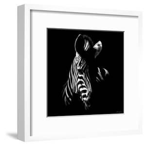 Wildlife Scratchboards V by Julie Chapman