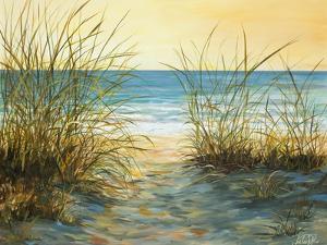 Cannon Beach by Julie DeRice