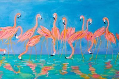 Flamingos by Julie DeRice