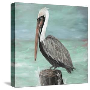 Pelican Way I by Julie DeRice