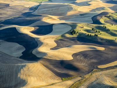 Aerial Photography at Harvest Time in the Palouse Region of Eastern Washington by Julie Eggers