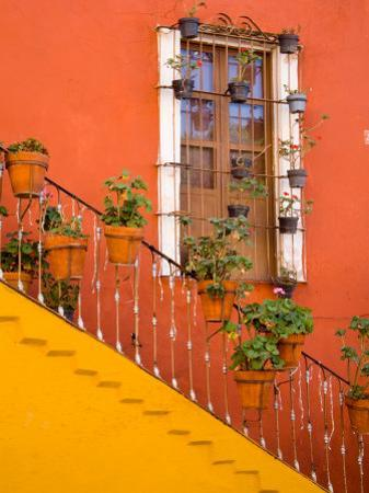 Colorful Stairs and House with Potted Plants, Guanajuato, Mexico by Julie Eggers