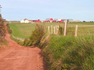 Country Road and Farm, Prince Edward Island, Canada by Julie Eggers