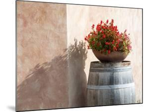 Europe, Italy, Tuscany. Flower Pot on Old Wine Barrel at Winery by Julie Eggers