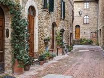 Italy, Tuscany, Chianti Region. This Is the Castello D'Albola Estate-Julie Eggers-Photographic Print