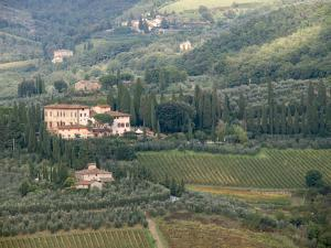 Italy, Tuscany. Countryside and Vineyards in the Chianti Region by Julie Eggers