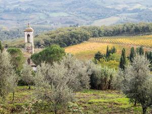 Italy, Tuscany. Santa Maria Novella Monastery Near Radda in Chianti by Julie Eggers