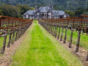 Ledson Winery, Sonoma Valley, California, USA by Julie Eggers