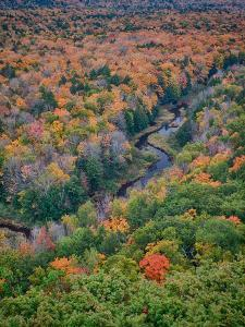 Michigan, Porcupine Mountains. the Big Carp River in Autumn by Julie Eggers