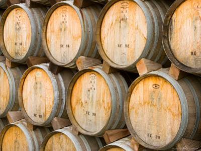 Oak Barrels in Winery, Sonoma Valley, California, USA