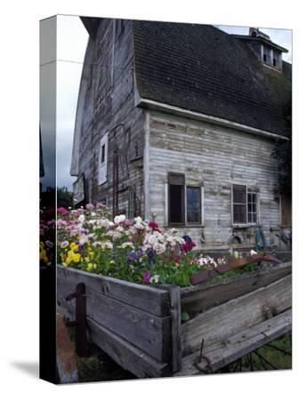 Old Barn with Wagon in Meadow, Whitman County, Washington, USA
