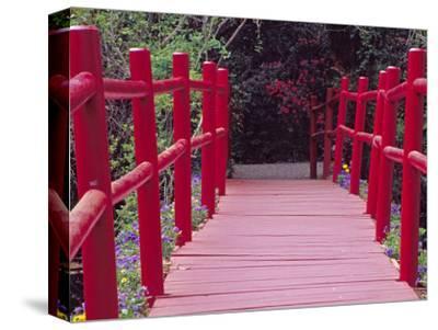 Red Bridge, Magnolia Plantation and Gardens, Charleston, South Carolina, USA