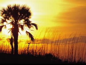 Sunset near Folley Beach, Charleston, South Carolina, USA by Julie Eggers
