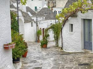 Typical Trulli houses in Alberobello. by Julie Eggers