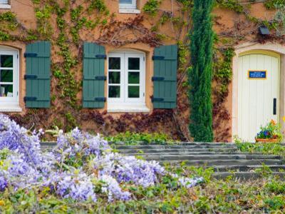 Viansa Winery, Sonoma Valley, California, USA by Julie Eggers