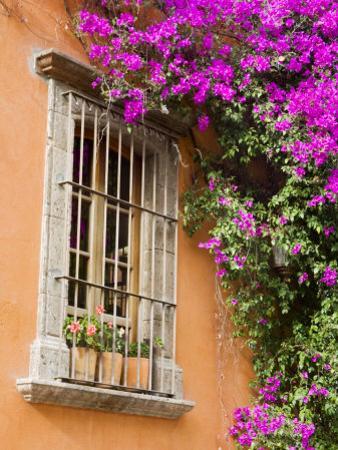 Window and Flower Pots, San Miguel De Allende, Guanajuato State, Mexico by Julie Eggers