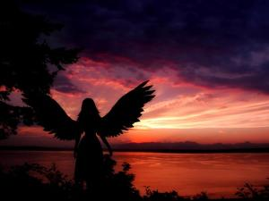 Angelic by Julie Fain