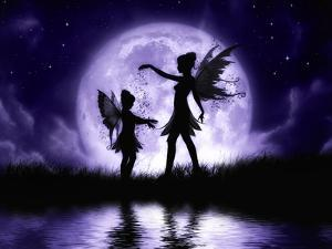 Fairy Sisters by Julie Fain