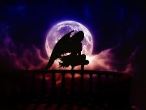 Falling Moon by Julie Fain