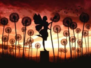 Make A Wish by Julie Fain