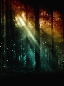 Radiance by Julie Fain
