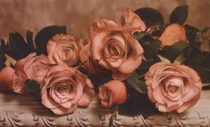 Dusty Rose by Julie Greenwood
