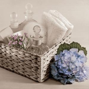 Hydrangea and Basket 2 by Julie Greenwood