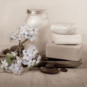 Hydrangea and Soap by Julie Greenwood