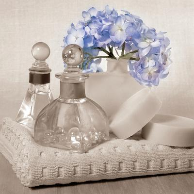 Hydrangea and Towel
