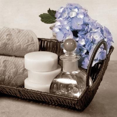 Hydrangea and Wicker by Julie Greenwood