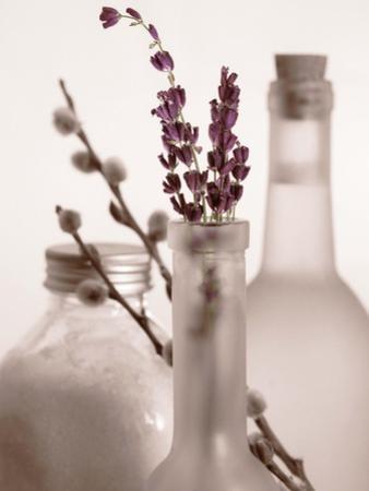 Lavender Bottles by Julie Greenwood