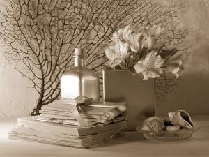 Ocean Memories by Julie Greenwood