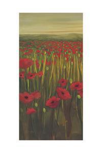 Red Poppies in Field I by Julie Joy