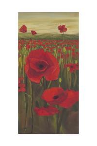 Red Poppies in Field II by Julie Joy
