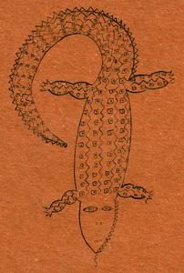 Crocodile, 2006 by Julie Nicholls