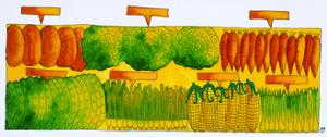 Vegetables, 1998 by Julie Nicholls