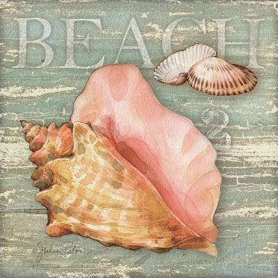 Beach Shells Conch
