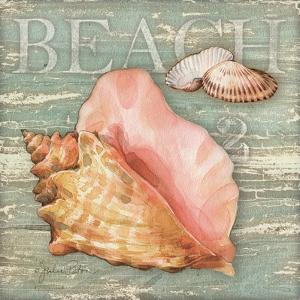 Beach Shells Conch by Julie Paton
