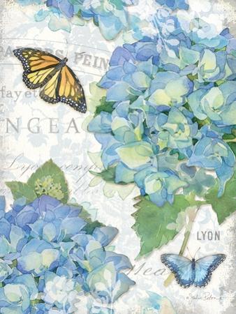 Garden Hydrangea II by Julie Paton