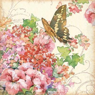 Geranium & Butterflies