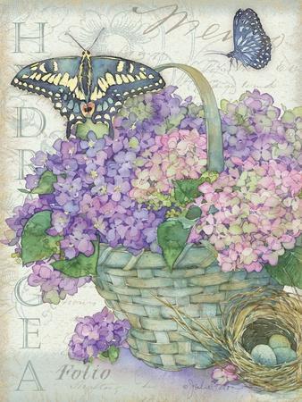 Hydrangea Folio
