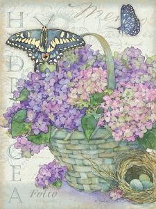 Hydrangea Folio by Julie Paton